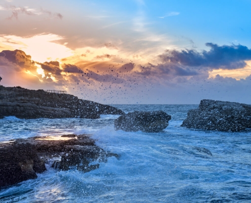 rocky coastline, sea water, sorrento, italy, sunset, sunrise, rock, stone, nature
