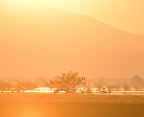 Kerkini lake, kerkini, early morning, orange light, hills, mountains, landscape, view, nature, birds, Artur Rydzewski