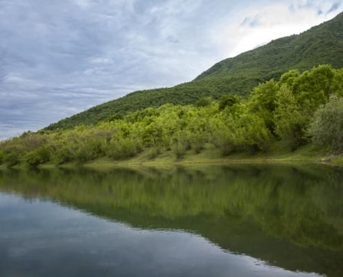 Kerkini, kerkini lake, water, lake, forest, trees, green, shadow, nature, calm, Artur Rydzewski